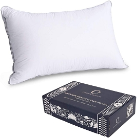 Memory Foam Pillow with Soft White Duck Down Cover (Queen)